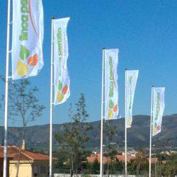 banderas publicitarias 1